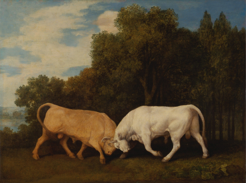 George Stubbs - Bulls Fighting